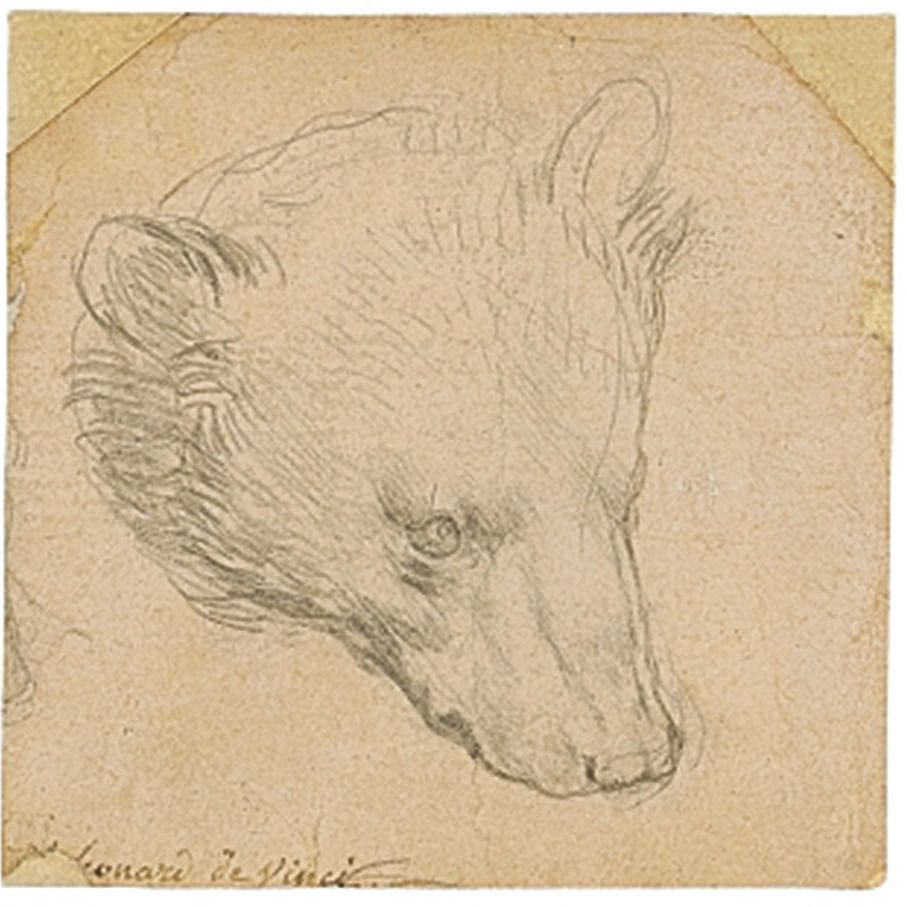 Leonardo drawing to fetch 'minimum' Rs 82 Crore