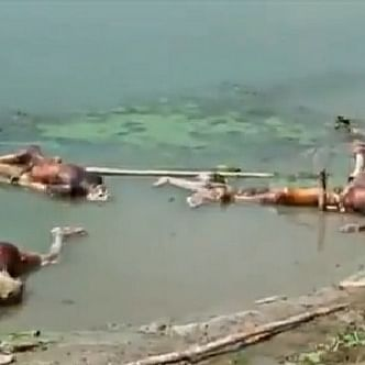 Dead bodies continue to be dumped into the Ganga in Bihar