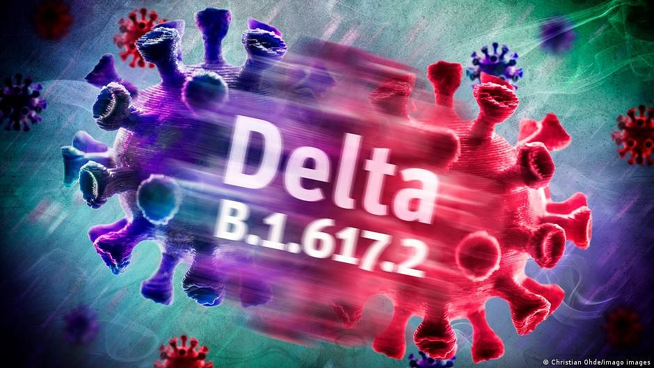 Delta variant produces similar viral loads in vaccinated, unvaccinated: Study
