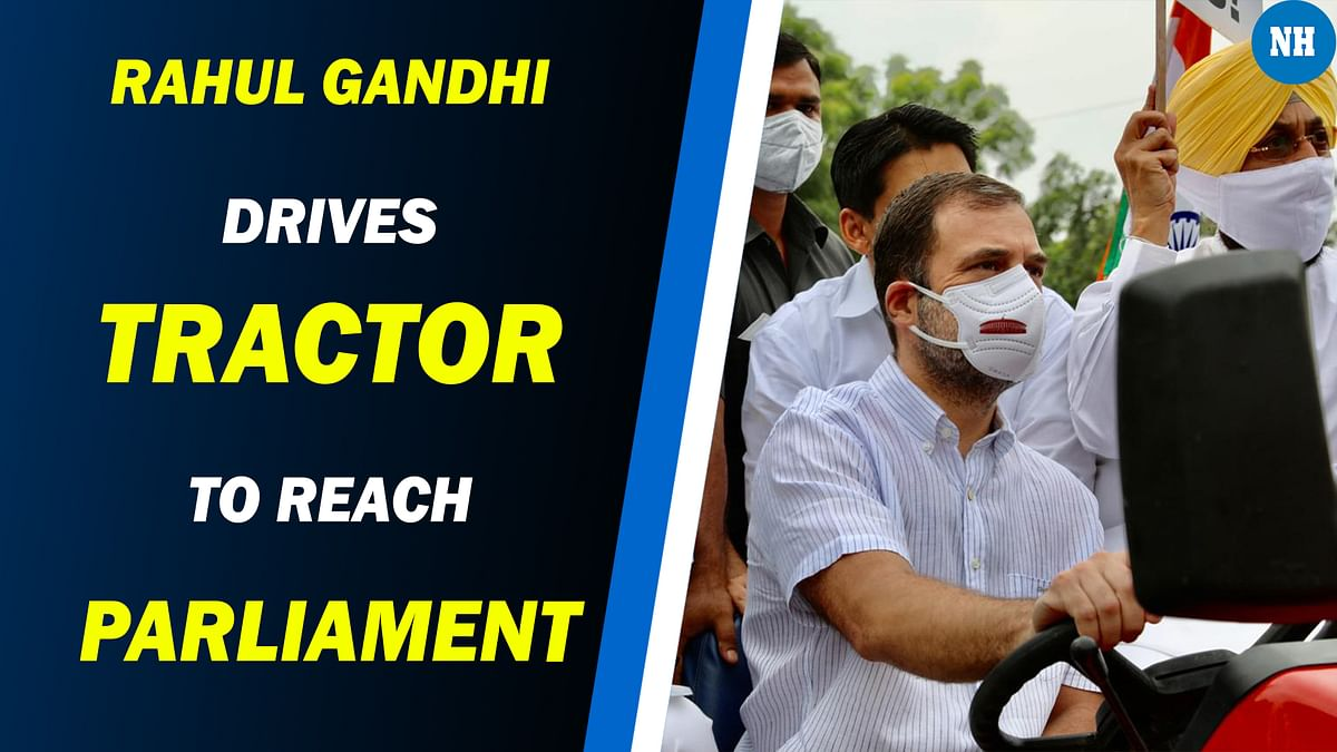 Rahul Gandhi Drives Tractor to Reach Parliament in Protest Against Farm Laws