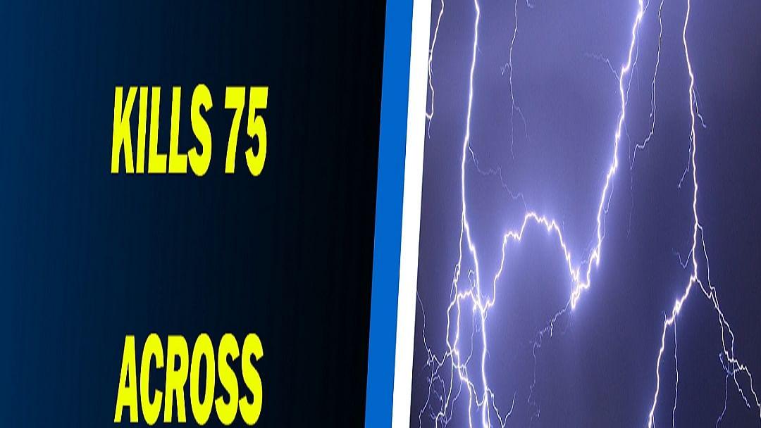 Lightning kills 41 in Uttar Pradesh, 20 in Rajasthan, 7 in Madhya Pradesh