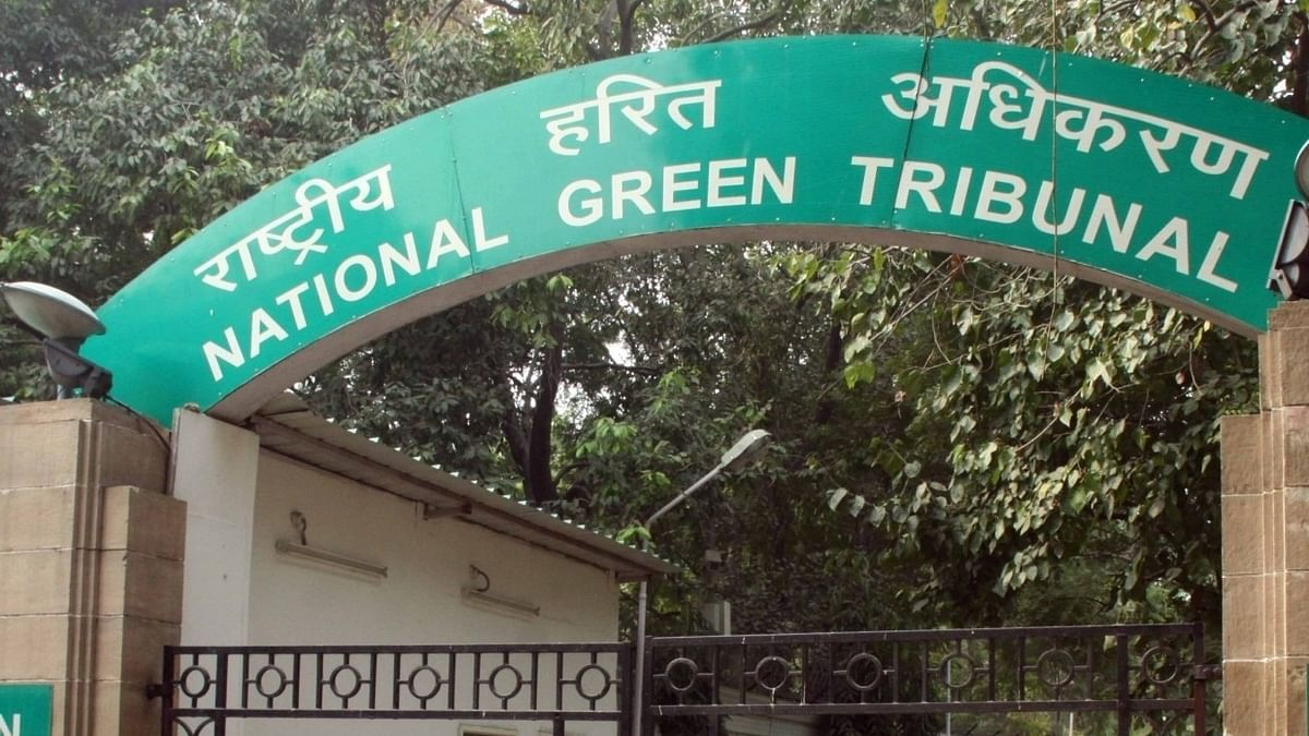 NGT directs inspection of dumping site near wildlife sanctuary in Haryana