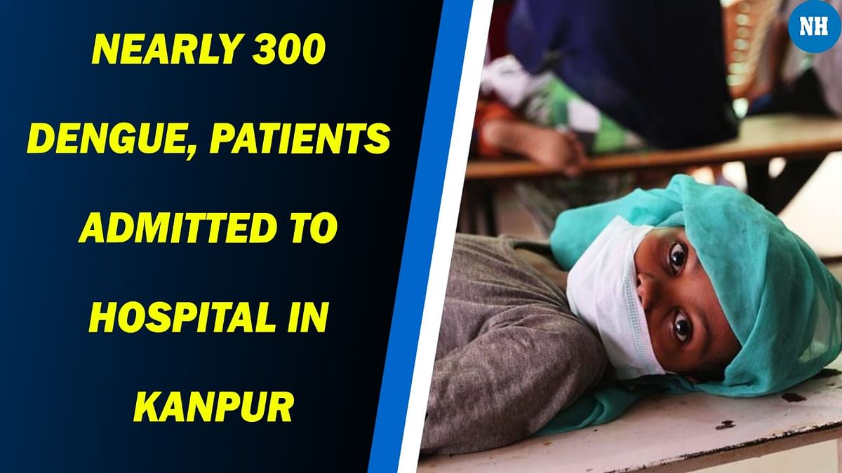 Nearly 300 dengue, viral fever patients admitted to hospital in Uttar Pradesh's Kanpur