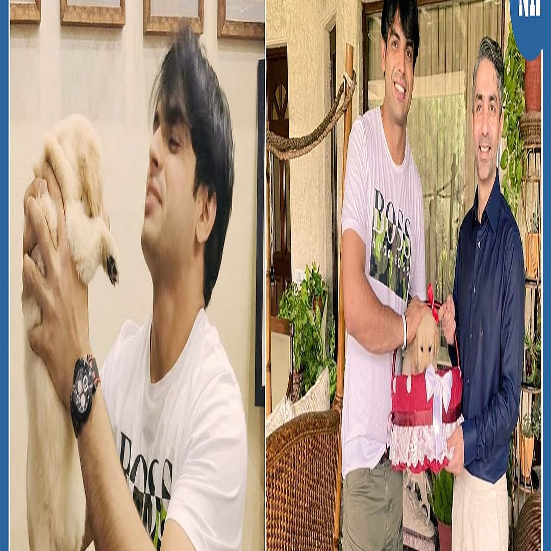 Bollywood Wrap: Ananya's swimming experience with turtles, Abhinav Bindra gifts Neeraj Chopra a puppy & more