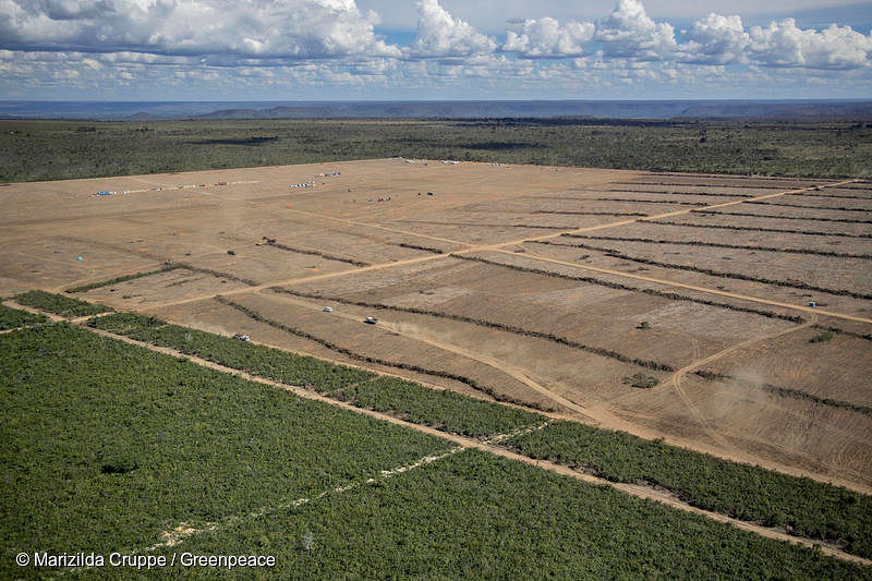 """Deforested area in the municipality of Barreiras, Bahia state. This region is known as the """"Ring of Soy,"""" because it encompasses large plantations, processors and soybean distribution centers."""