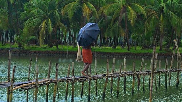 While a cold wave is expected in the North of India, it's  a wet weather down South