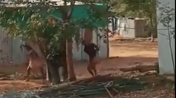 Two men arrested for beating temple elephant Jayamalyatha