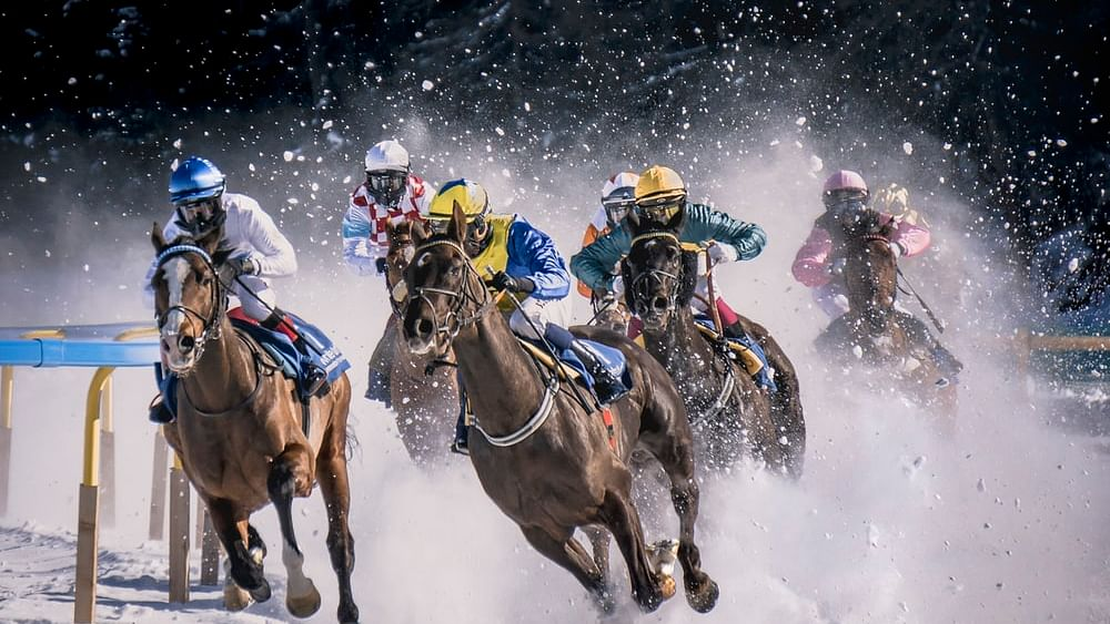 Kerala's first-ever horse racing suspended due to non-compliance with Covid-19 protocols