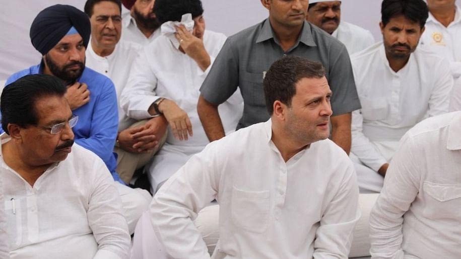 राजघाट से राहुल की  बीजेपी को चुनौती, 'जातिवादी और दलित विरोधी मोदी सरकार को 2019 में हराकर रहेंगे'
