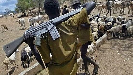 नाइजीरिया: किसानों और चरवाहों के बीच हिंसक झड़प में 86 लोगों की मौत, कई घायल