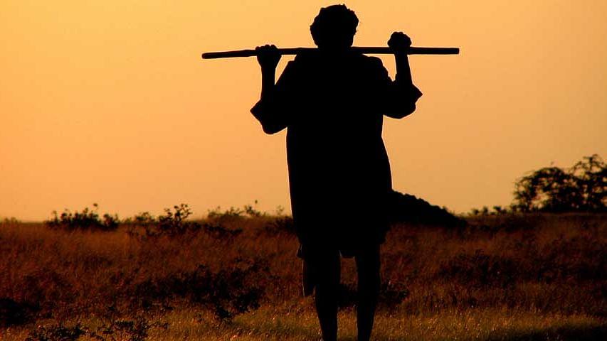 शिव'राज' में नहीं थम रहा किसानों की खुदकुशी का सिलसिला, एक और किसान ने जहर खाकर दी जान