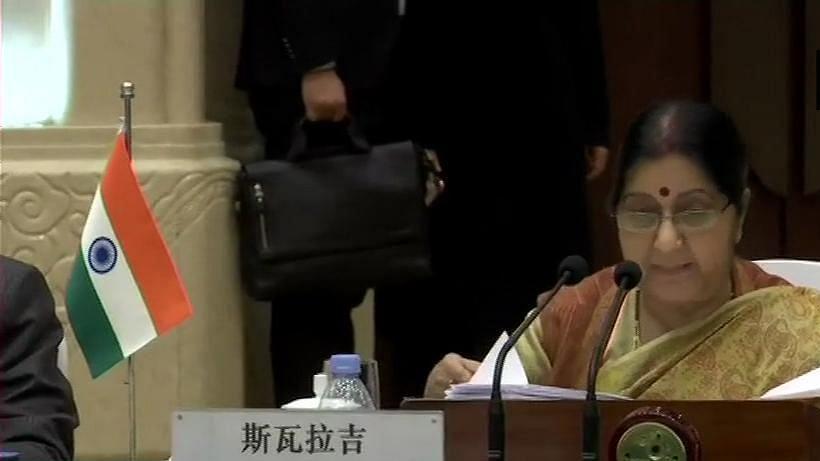 पीओके में आतंकियों के खिलाफ कार्रवाई पर चीन में बोलीं सुषमा, पाक ने नहीं लिया एक्शन, करनी पड़ी 'असैन्य कार्रवाई'