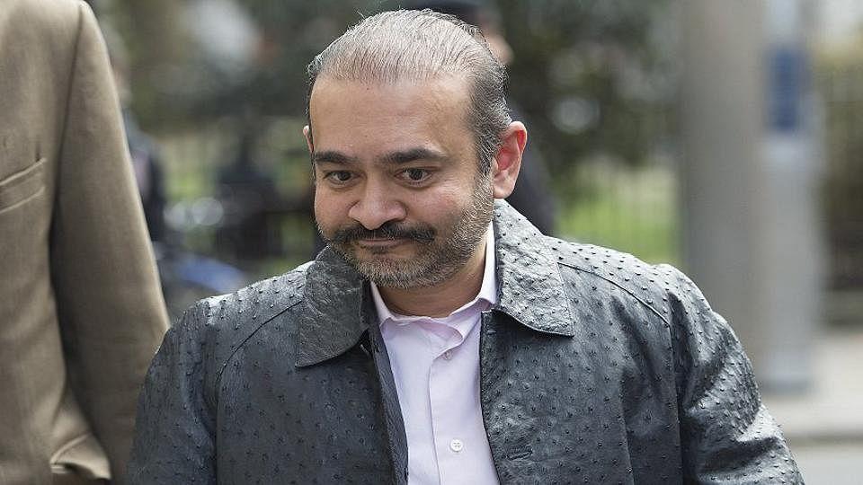 नीरव मोदी को बीजेपी ने ही भगाया, अब चुनाव के लिए वापस लाकर फिर छोड़ देगी: कांग्रेस