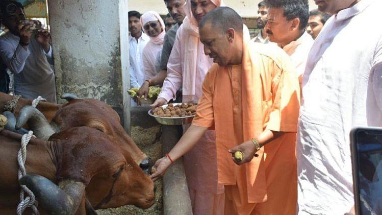 चुनाव आयोग के प्रतिबन्ध के बावजूद मंदिरों और दलितों के घरों में घूम रहे योगी आदित्यनाथ