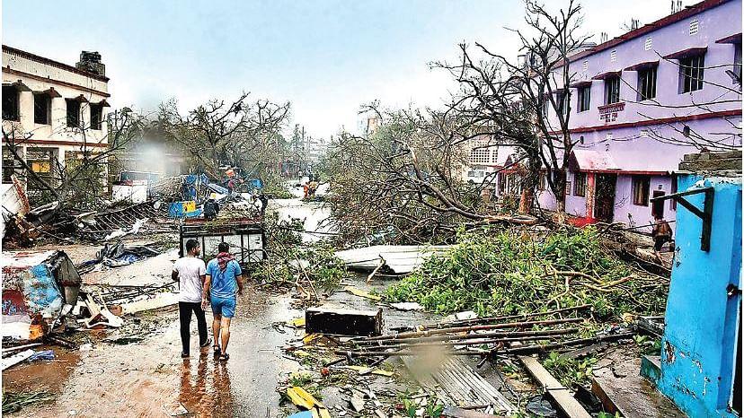 इंसान तूफानों को रोक तो नहीं सकता, लेकिन पेड़ लगाकर तबाही से बच सकता है