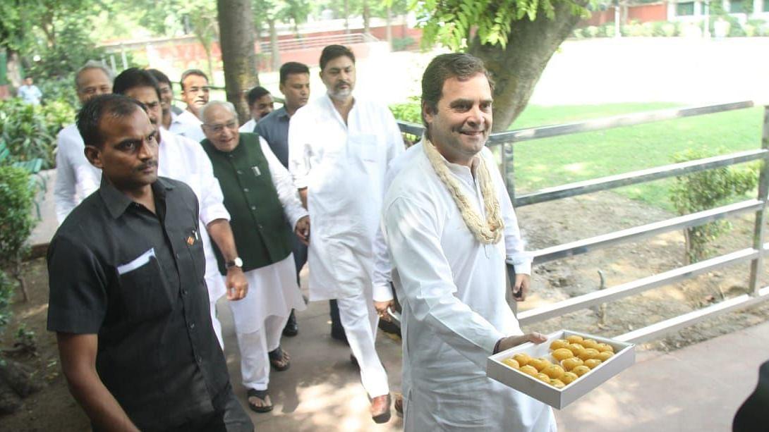 तस्वीरें: राहुल गांधी के जन्मदिन पर बधाइयों का तांता, किसी ने लगाई पेड़ तो किसी ने लंबी उम्र के लिए किया हवन