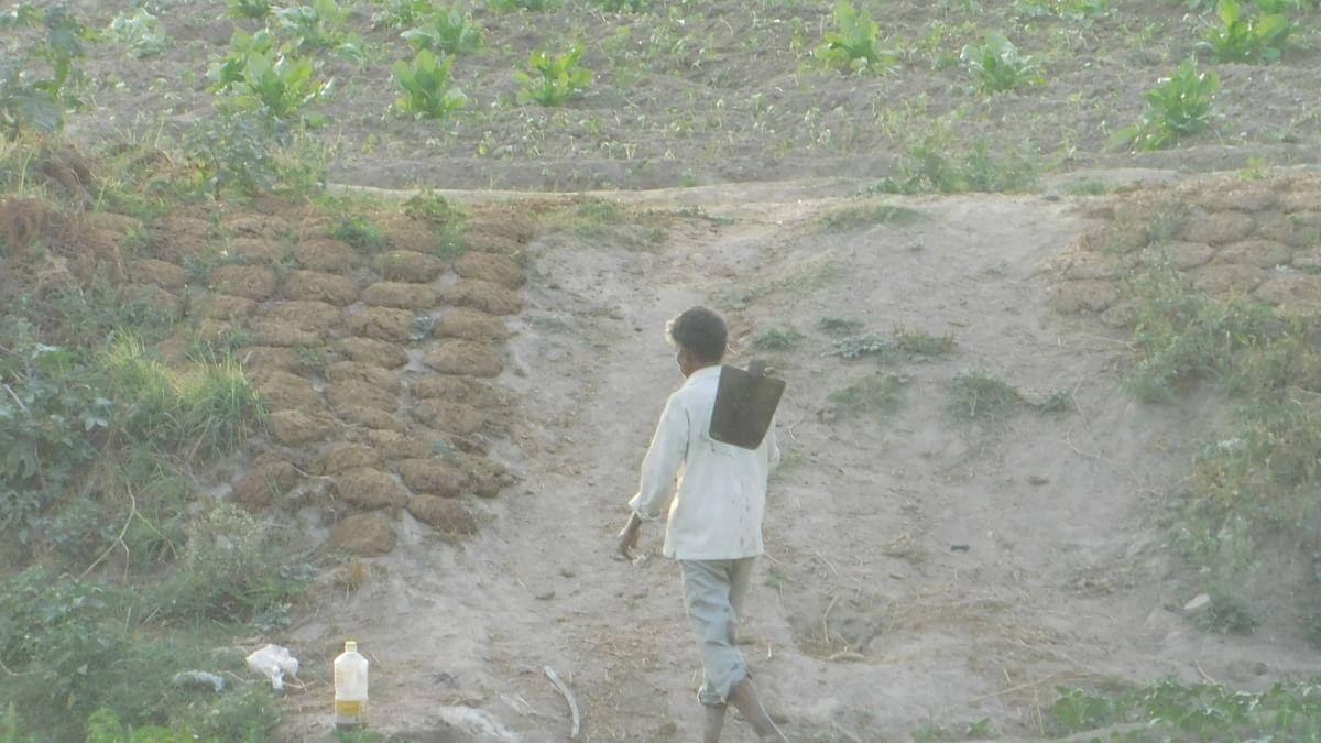 जलवायु परिवर्तन से घट रही है अनाज की पैदावार, अब पूरी दुनिया में बढ़ेगी भूख से पैदा संघर्षों की तादाद