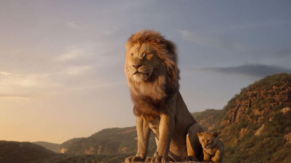 सिनेजीवन: इंडिया के साथ ही यूएई में भी रिलीज होगी 'द लायन किंग' और अपनी फिल्म की शूटिंग के दौरान घायल हुए वरुण
