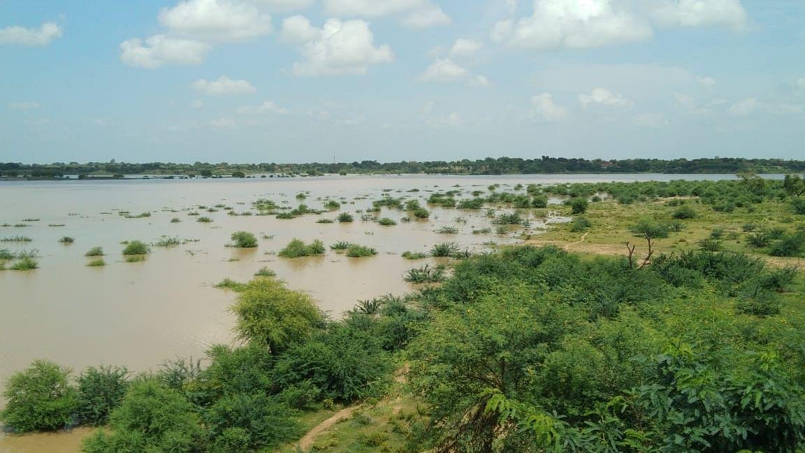 दिल्ली-नोएडा पर बाढ़ का खतरा! यमुना किनारे रहने वालों से सुरक्षित स्थानों पर जाने की अपील, पुराने लोहे का पुल बंद