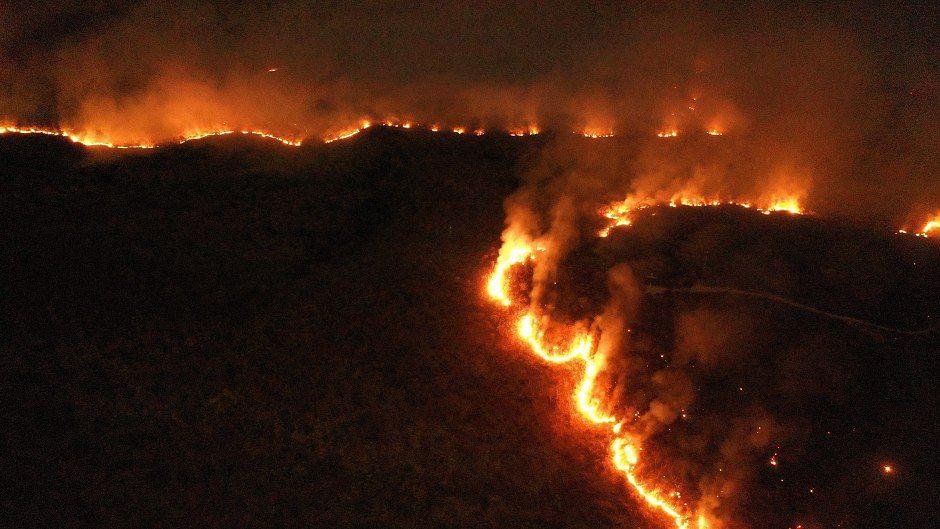 अमेजन की आगः इंसानी नासमझी की जलती दास्तान