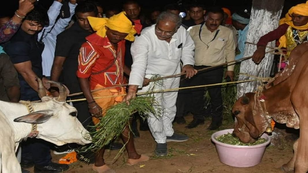 छत्तीसगढ़ः 'गाय, गांधी और गांव' की राह चली भूपेश सरकार