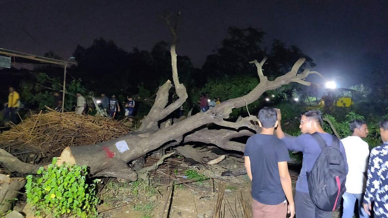 महाराष्ट्र सरकार को बड़ा झटका, सुप्रीम कोर्ट ने आरे कॉलोनी में पेड़ों की कटाई पर लगाई रोक, कटाई तुरंत बंद करने के आदेश