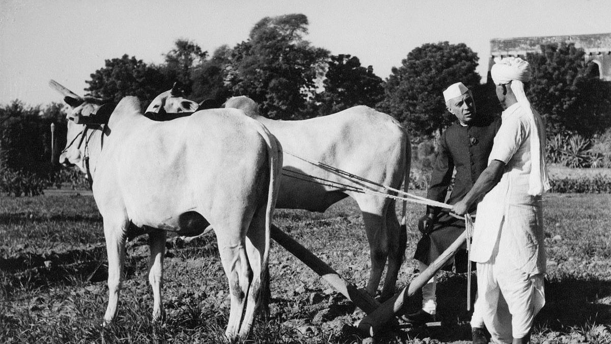 'नेहरू को कोसने वाले कागजी शेरों को कौन बताए कि भारत का तेज विकास उनके कारण ही संभव हो सका'