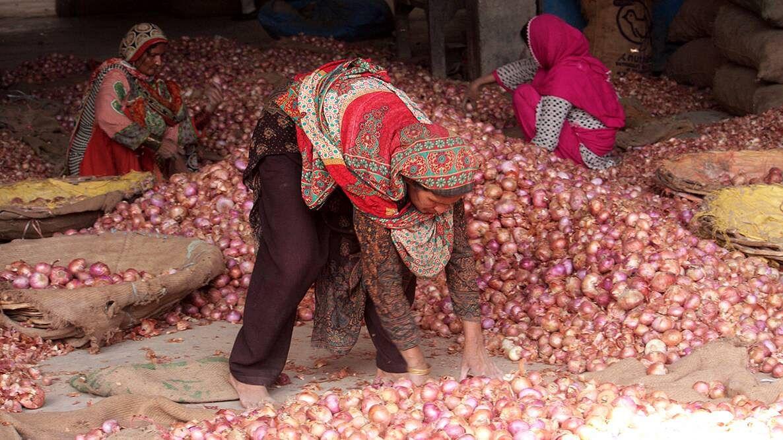 प्याज की बढ़ती कीमतों ने भारत के साथ पड़ोसी देश को भी रुलाया, बांग्लादेश में कीमत 200 के पार