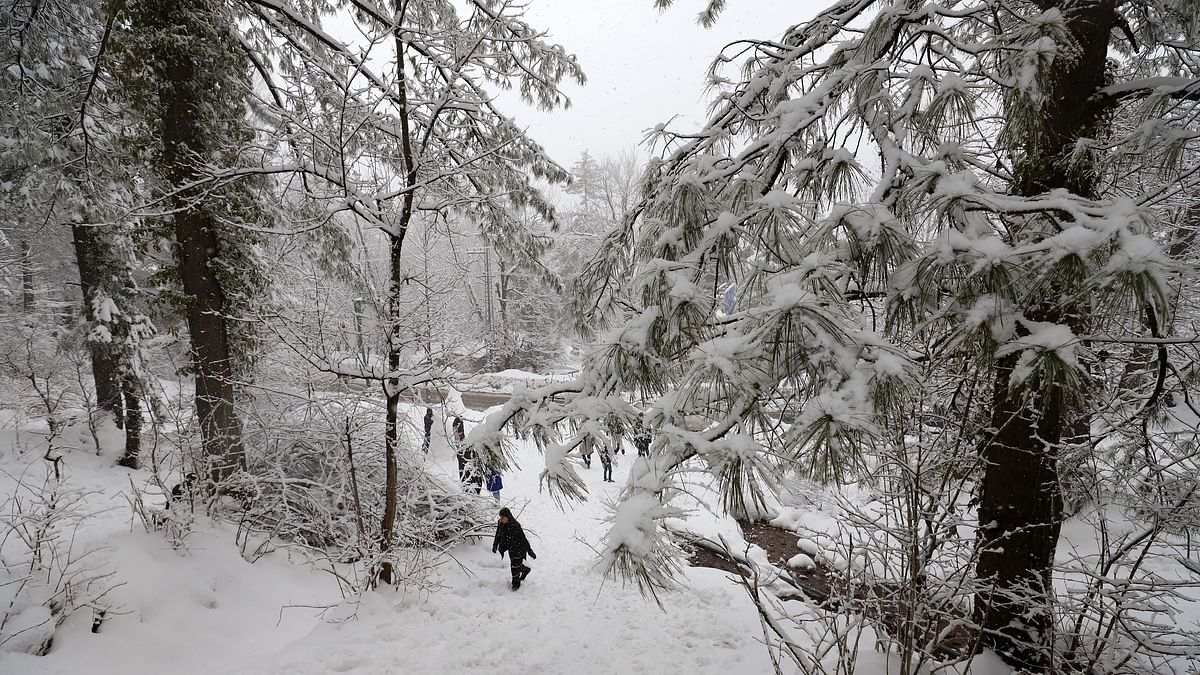 पाकिस्तान में बर्फबारी ने 50 साल का रिकॉर्ड तोड़ा, अब तक 57 लोगों की मौत
