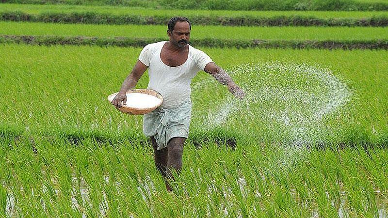 बजट 2020: किसान के लिए 16 सूत्रीय योजना का ऐलान, किसान रेल और उड़ान सेवा से जाएगा किसानों का सामान