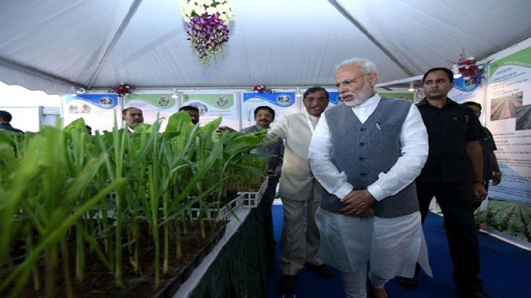 देश का खेत-किसान बदहाल, फिर कैसे  बजट में कटौती कर सम्मान दिलाएंगे पीएम मोदी
