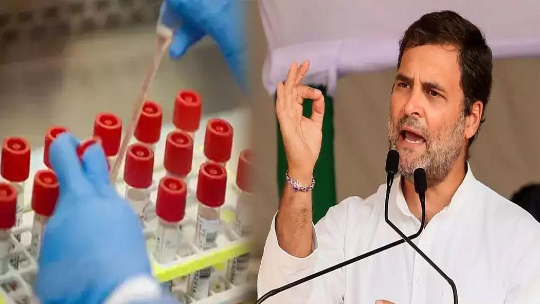 कोरोना रैपिड टेस्ट किट पर मुनाफाखोरी देश नहीं करेगा माफ, पीएम लें एक्शन: राहुल गांधी