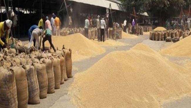 लॉकडाउनः गेहूं की सरकारी खरीद से किसानों को राहत नहीं, तय दाम से कम भाव पर बेचने के लिए मजबूर