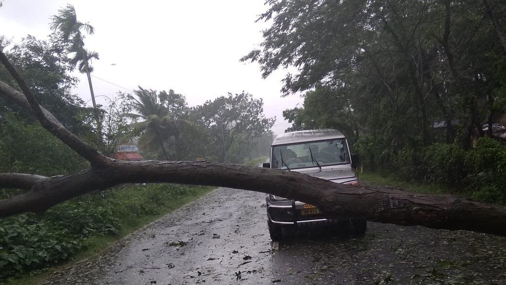 Amphan Cyclone LIVE: अम्फान ने बंगाल के उत्तर 24 परगना में दिखाया कहर, 2 की मौत, 2 गंभीर, 5500 घर तबाह