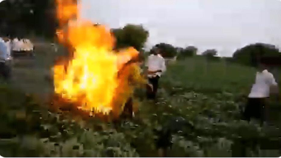 उत्तर प्रदेश के बाद मध्य प्रदेश में भी महिला ने लगाई आग, सरकारी अमले के फसल रौंदने पर उठाया कदम