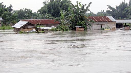 बिहार में बाढ़ के पानी बढ़ने के साथ-साथ 'बेजुबानों' का बढ़ता गया मर्ज, चारा पर भी आफत