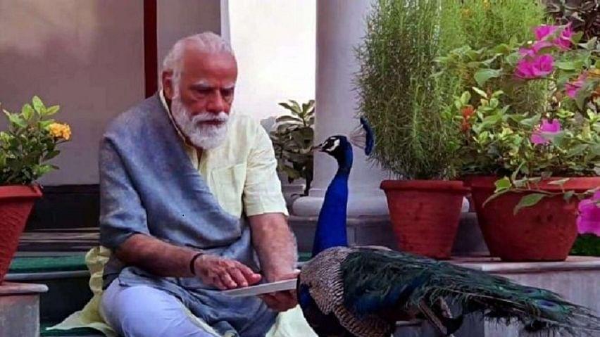 डूबते देश में एक अभिनेता की मौत राष्ट्रीय आपदा, प्रधानमंत्री के शब्दों में यही है 'न्यू इंडिया'