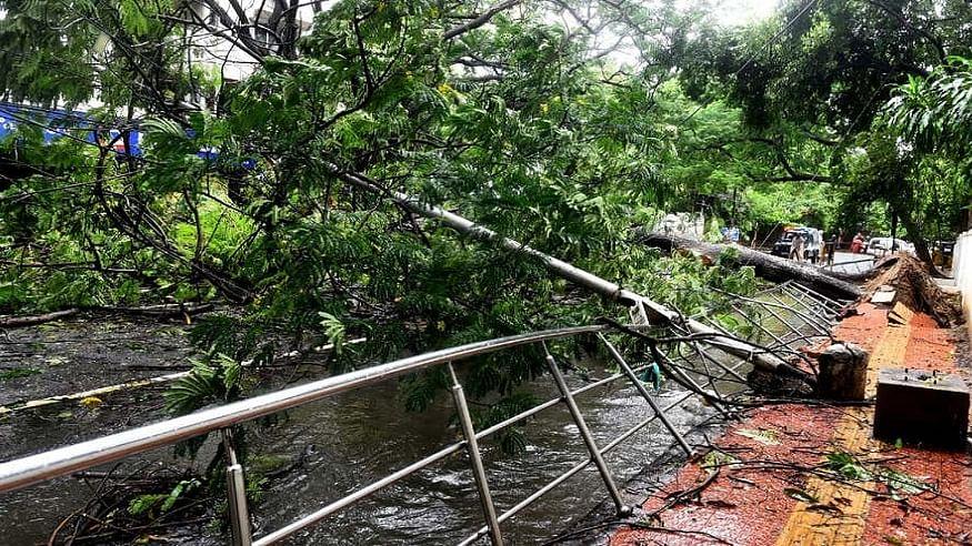 चक्रवात 'निवार' के गुजरने के बाद तमिलनाडु-पुडुचेरी में तबाही का मंजर, राहत कार्य में जुटी NDRF, देखें तस्वीरें