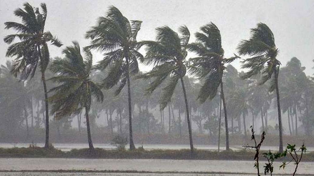तमिलनाडु और पुदुचेरी पर चक्रवात 'निवार' का खतरा, 25 नवंबर को तटों को कर सकता है पार, सावधान रहने के निर्देश