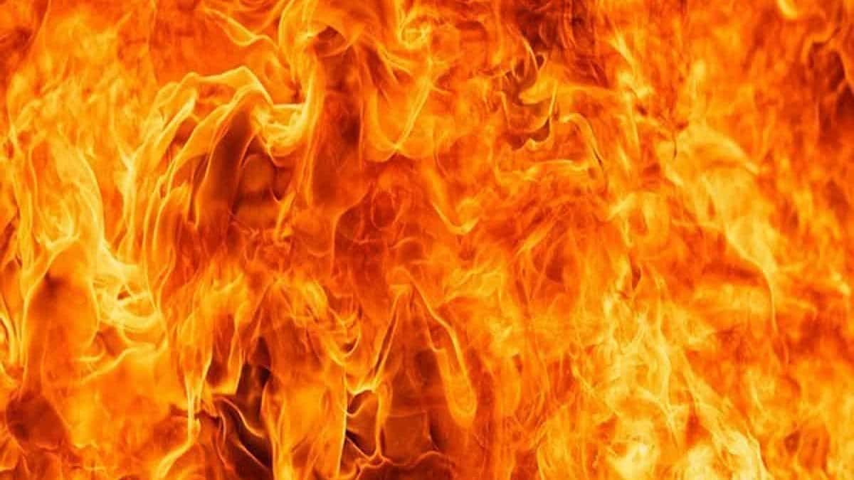 तमिलनाडु के विरुधुनगर में बड़ा हादसा, पटाखा फैक्ट्री में विस्फोट से 6 लोगों मौत, कई घायल, राहुल गांधी ने जताया दुख