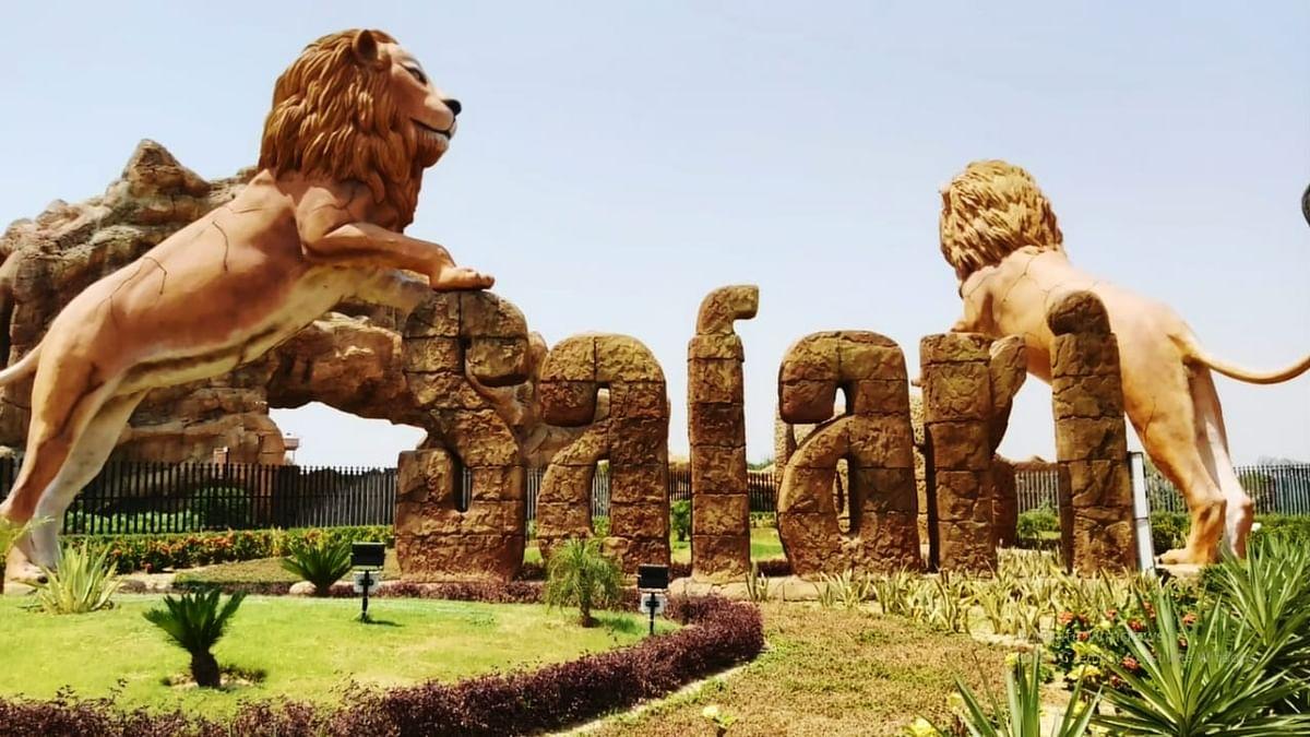 यूपी में कोरोना के कहर से हाहाकार! जानवरों तक पहुंचा संक्रमण, इटावा लायन सफारी में पॉजिटिव मिली दो शेरनी