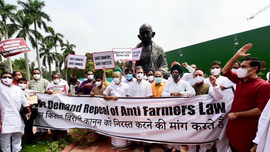 किसान आंदोलन: संसद परिसर में कांग्रेस का प्रदर्शन, राहुल गांधी बोले- वे असत्य, अन्याय पर अड़े, हम एकजुट यहां खड़े