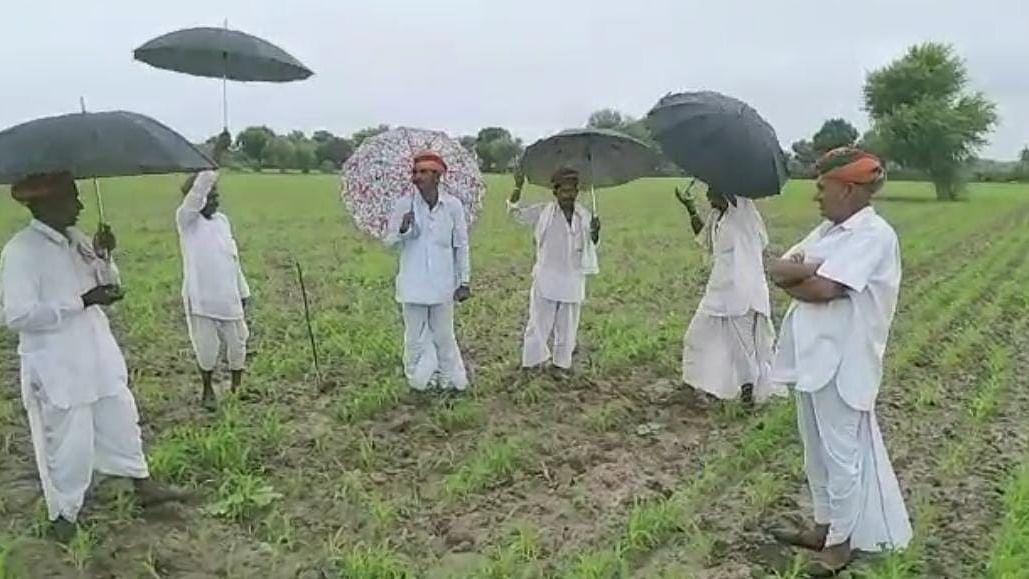 अविश्वसनीय: राजस्थान में किसानों के गीत गाने से होती है बारिश? कैम्ब्रिज करेगा रिसर्च