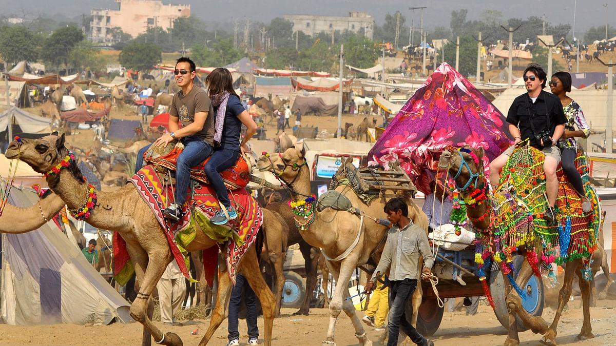 राजस्थान में पर्यटकों से भूलकर भी मत करना बदसलूकी! ऐसा करना अब गैर जमानती अपराध है