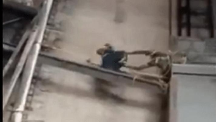 बड़ी खबर LIVE: CISF ने 50 मीटर ऊंचे लिफ्ट में फंसे दो श्रमिकों की जान बचाई, मध्य प्रदेश के थर्मल पावर स्टेशन की घटना