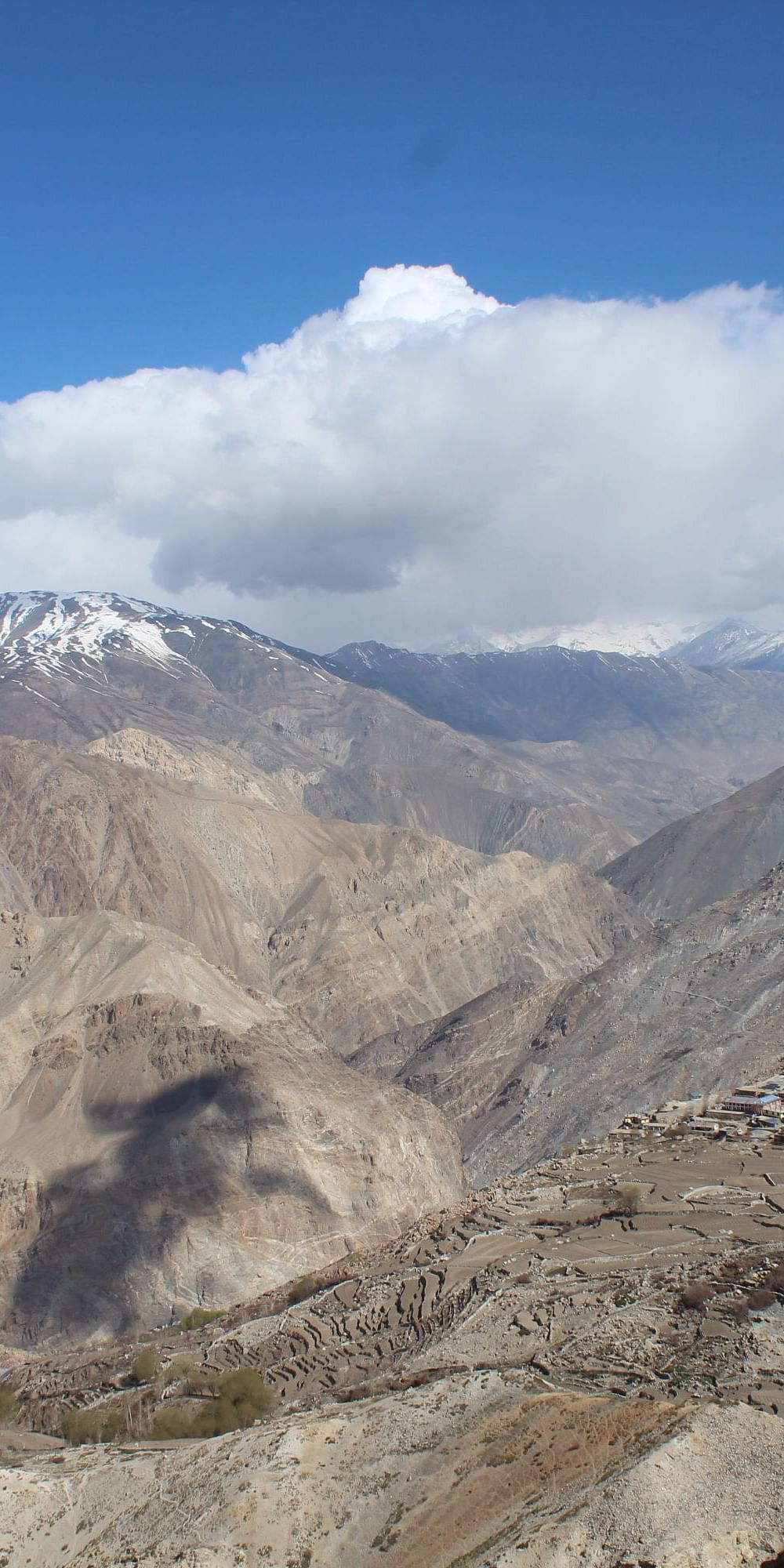 Changing use of ecosystem services along a rural-urban continuum in the Indian Trans-Himalayas