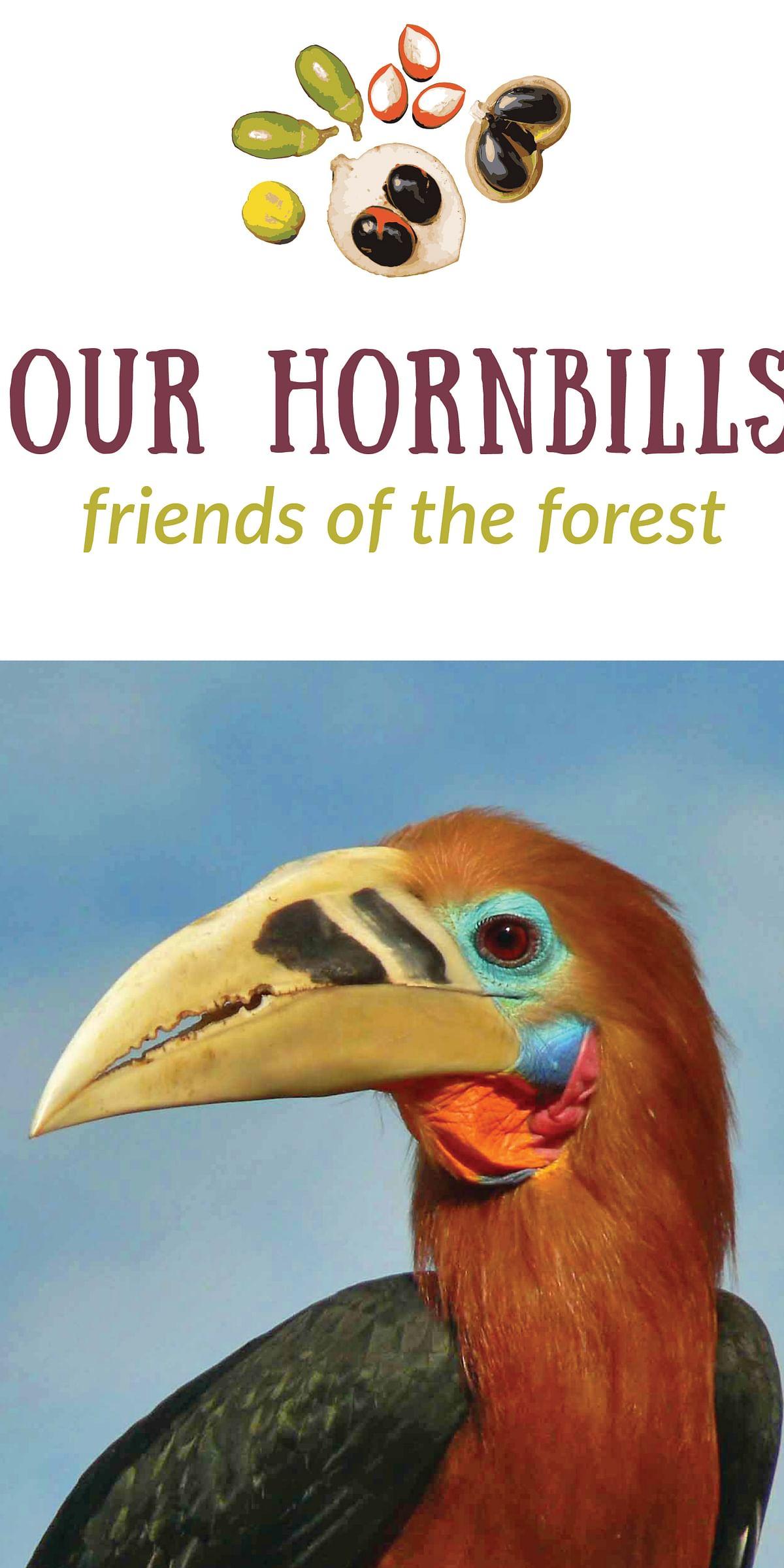 Hornbills of Arunachal Pradesh