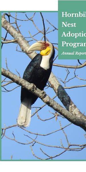 Hornbill Nest Adoption Program - 2019 Breeding Season