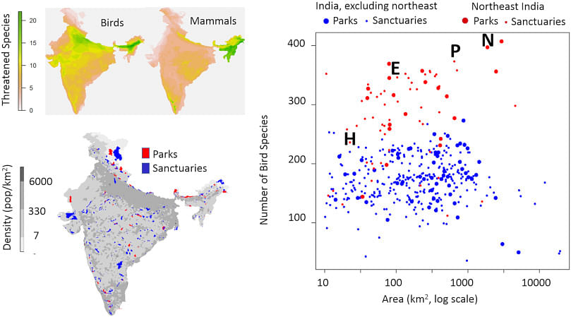 Protected areas and biodiversity conservation in India