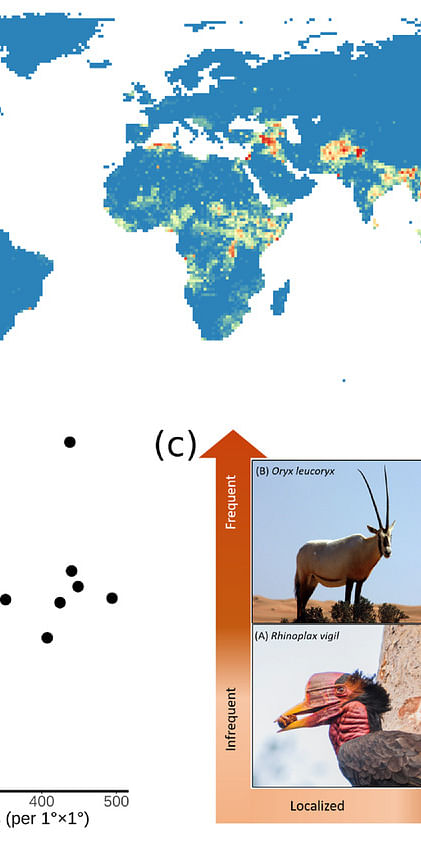 Global patterns of armed conflicts, armed conflicts are relatively more extensive within terrestrial biomes and Species exposure to armed conflict can range in spatial extent from absent or localized to widespread, and in temporal persistence from absent or infrequent to frequent